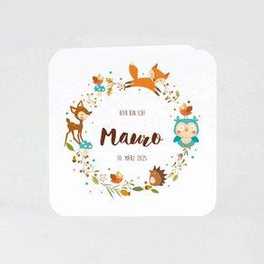suesse-geburtskarte-mit-waldtieren-TA05500-1800014-07-1
