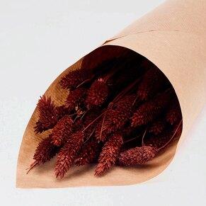 phalaris-braun-trockenblumen-zur-hochzeit-TA182-209-07-1
